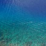 グミの様で美味しそうな海 - 2013/05/05 13:03