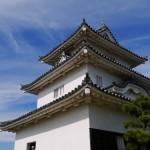 丸亀城天守閣の壁の質感 - 2015/09/20 14:55