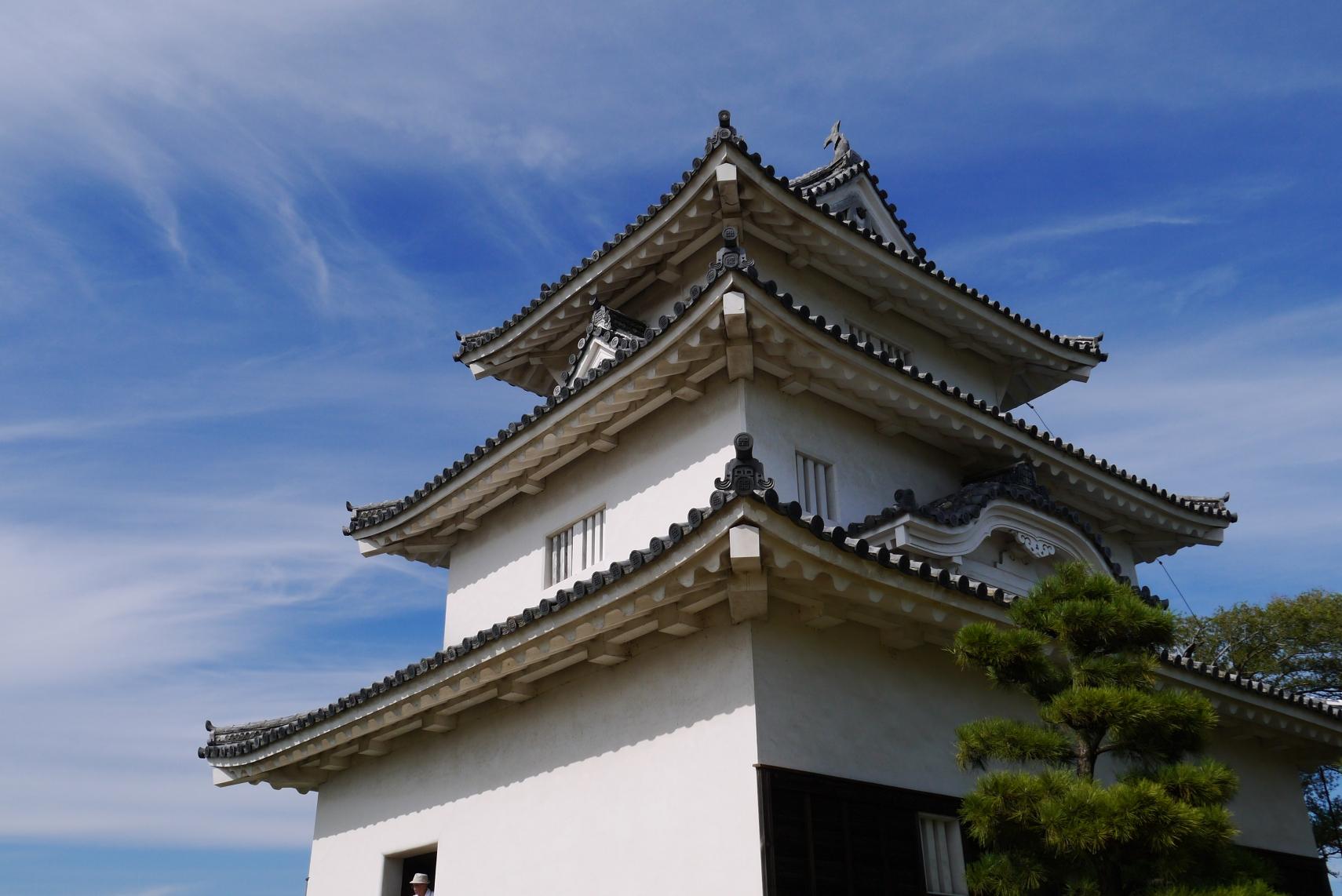 丸亀城天守閣の壁の質感